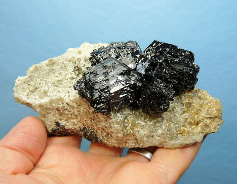 Glossy schorl crystal group (Variety Foitite) on matrix